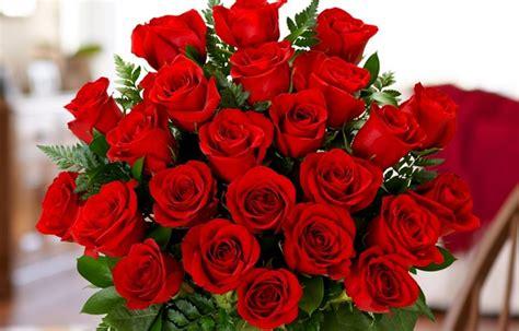 Merah Ros kenapa lelaki akan bagi bunga ros merah pada wanita