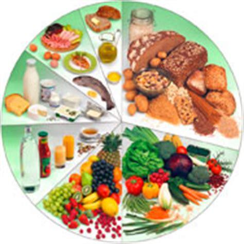 vitamines en minerales de tuinen gezond eten basisprincipes voor gezonde voeding van a vogel