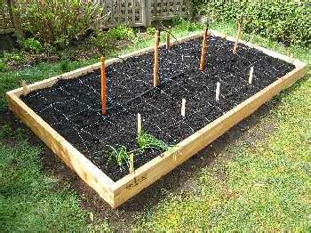 raised flower bed  garden