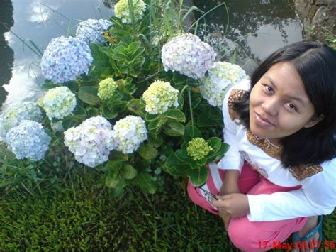 Bukan Sembarang Bunga bukan foto bunga biasa jeprat jepret hape