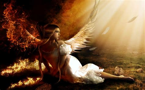 wallpaper collection  angel wallpapers