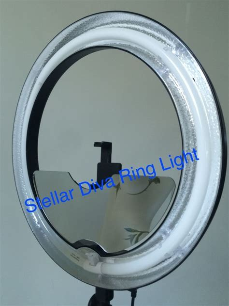 stellar diva 18 ring light 686 best learn life 164 quotes images on pinterest a