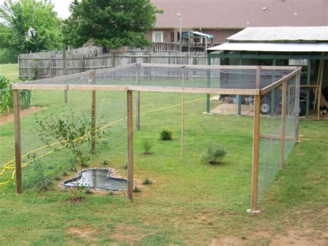 backyard quail coop backyard quail pens and quail housing outdoor goods