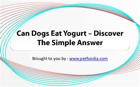 can dogs yogurt can dogs eat yogurt discover the simple answer