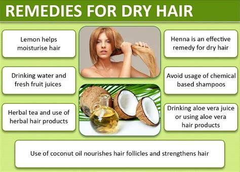 what to use for dry overcolored hair homemade hair conditioners and detanglers