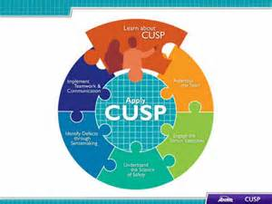 learn about cusp facilitator notes agency for