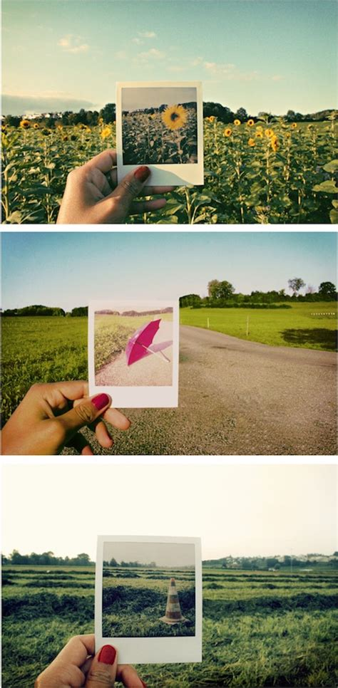 photo taking themes 25 creative exles of polaroids in pictures