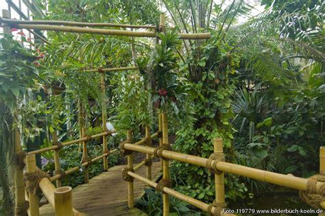Garten Flora by Bilderbuch K 246 Ln Botanischer Garten Flora Tropenhaus