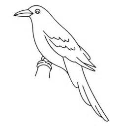 bird coloring book birds coloring pages free printable birds coloring book