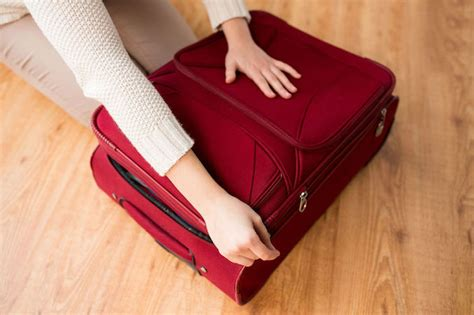 what you need to know to buy a house everything you need to know about what luggage to buy