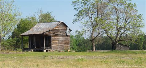 Tin Cabin by Tin Cabin Orangeburg County S C Bettersouth Org