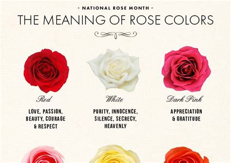 flower color meanings chart national month the meaning of colors