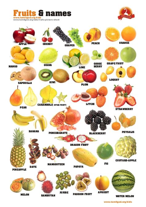 vegetables names fruits and names picture sheet