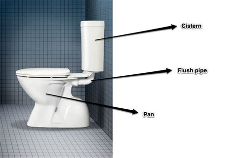 Asp Plumbing by Toilet Plumbing Schematic Toilet Get Free Image About Wiring Diagram