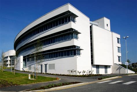 Dublin Business School Mba Placements by Educated Workforce Business Waterford