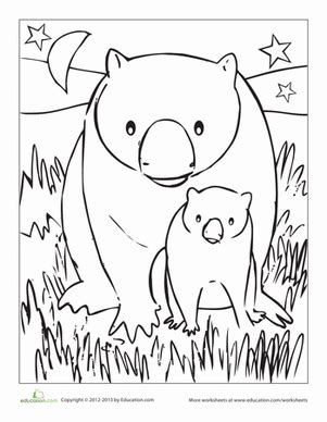 Wombat Coloring Page Coloring Pages Wombat Coloring Page