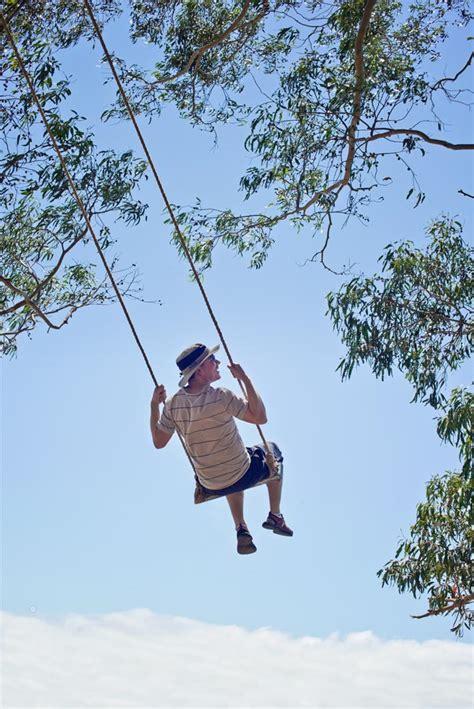 tree swing san francisco hippie tree tiburon the bubbly bay