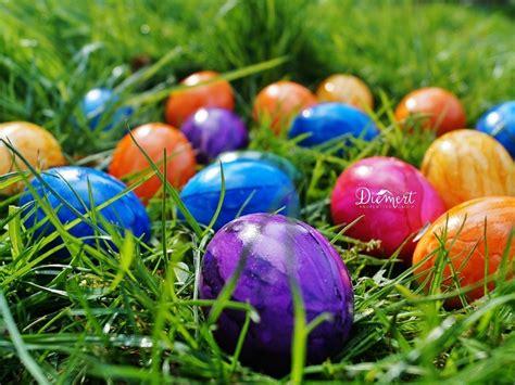 easter egg hunts in snohomish county diemert properties group