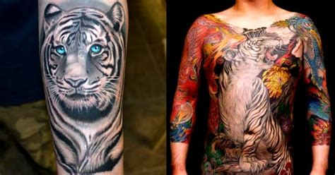 white tiger tattoo queenstown reviews 14 magnificent white tiger tattoos tattoodo