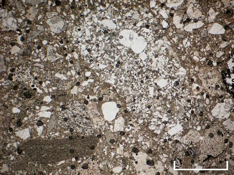 phyllite in thin section cambridge rocks minerals fossils