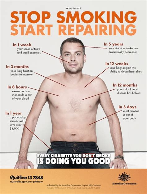 Stop Smoking Meme - your body after quitting smoking 2 pics
