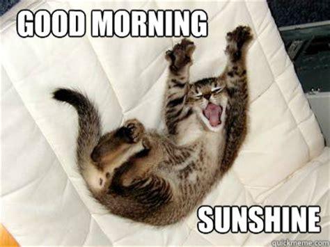 Good Morning Sexy Memes - good morning bitches morning 1 quickmeme