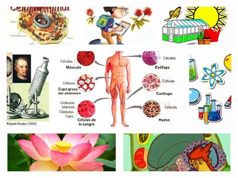 imagenes ciencas naturales ciencias naturales materia para impartir ciencias naturales
