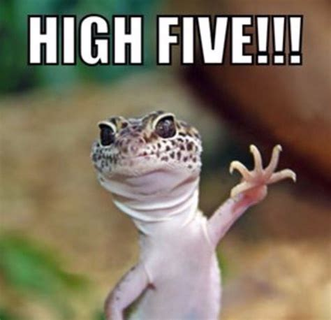 High Five Meme - funny high five meme