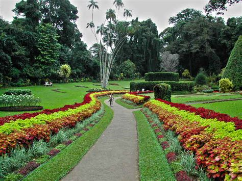 Ramayana Trail Tour Sri Lanka With Airfare Holiday Travel Hakgala Botanical Garden