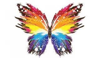 Hd background butterfly art abstract design colorful wallpaper