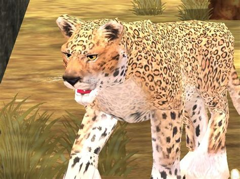the jaguar tycoon books 64 best zoo tycoon 2 images on zoos extinct