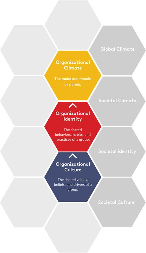 climatic pattern of organization organizational culture alder koten