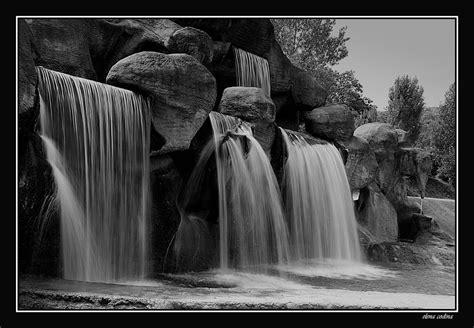 fotos de naturaleza en blanco y negro blog de fotograf 237 a blanco y negro imagen foto paisajes naturaleza fotos