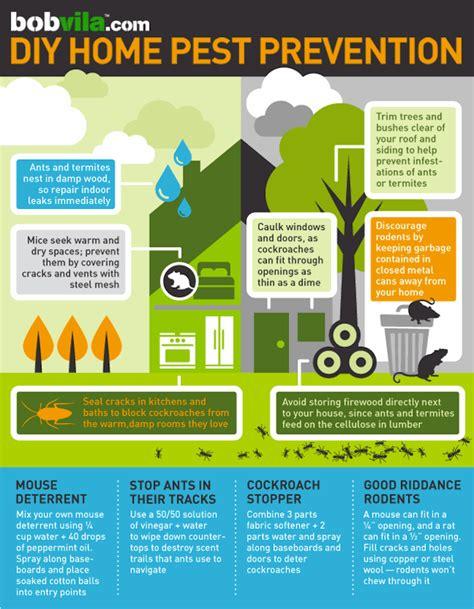 home team pest defense winter garden diy pest prevention infographic bob vila
