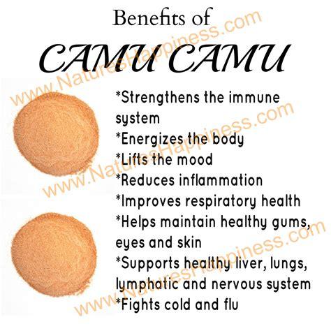 Organic Camu Camu Berry Powder   Natures Happiness Blog   News, Tips, Reviews & Recipes