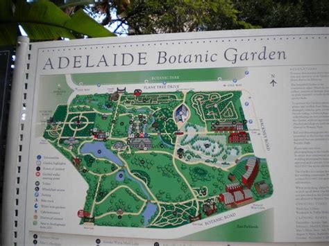 botanic gardens adelaide map botanic gardens picture of adelaide botanic garden
