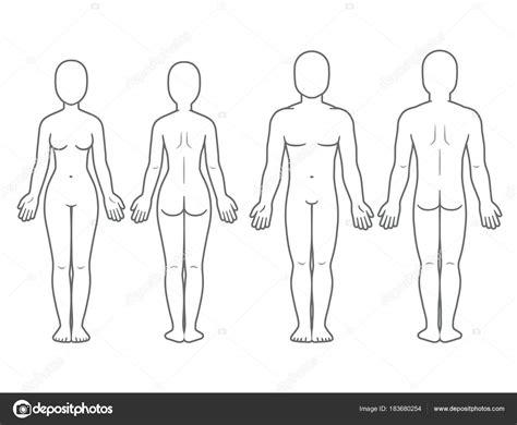 desenho corpo costas e frente do corpo masculino e feminino vetores de