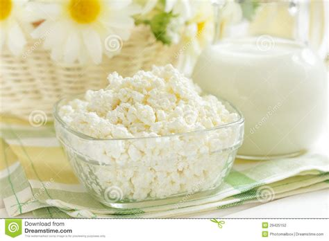 Cottage Cheese From Milk by Cottage Cheese And Milk Stock Photography Image 29425152