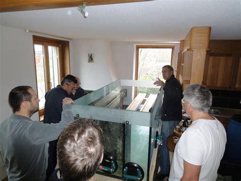 aquarium umzug firma umzug philipps aquarium meerwasser aquarium