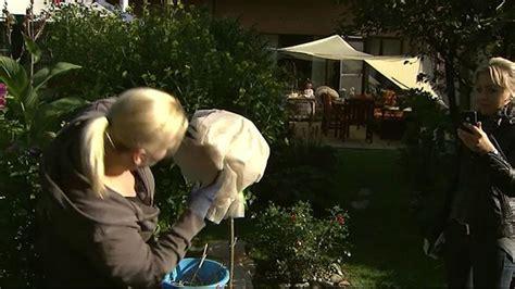 Garten Pflanzen Winterfest Machen by So Machen Sie Pflanzen Und Garten Winterfest