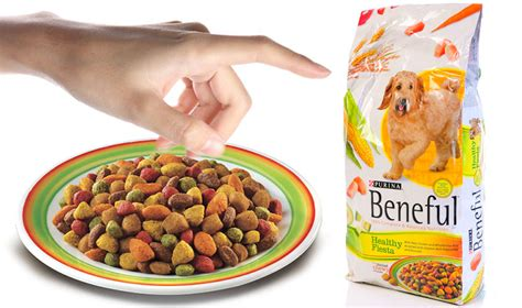 beneful food puppy don t be so to point fingers at beneful food