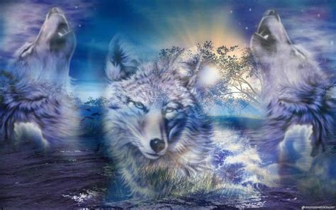 wallpaper for desktop wolf wallpapers wolves wallpaper cave