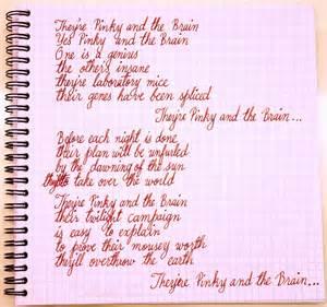 Handwritten lyrics of the pinky and the brain theme song