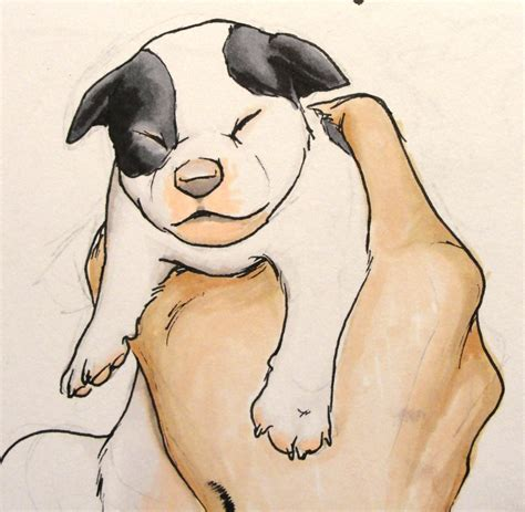 how to puppy a how to draw a baby puppy pencil drawing