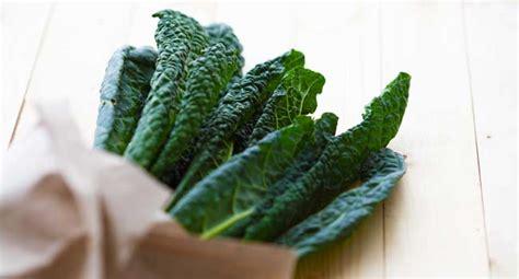 alimenti vegetali alimenti vegetali ricchi di calcio la guida completa