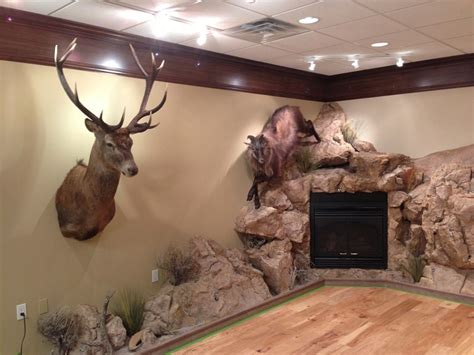 trophy room taxidermy taxidermy trophy rooms related keywords taxidermy trophy rooms keywords keywordsking