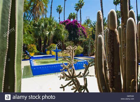 garten yves laurent marrakech blaue font 228 ne und kaktus in majorelle g 228 rten g 228 rten