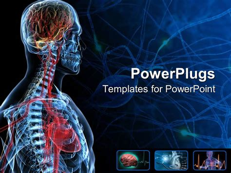 ppt templates free download biology powerpoint template the anatomy of a human with bluish