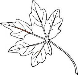 Outline Drawing Of A Leaf by Maple Leaf Clip At Clker Vector Clip Royalty Free Domain