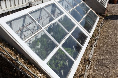 greenhouse windows window pane window pane greenhouse